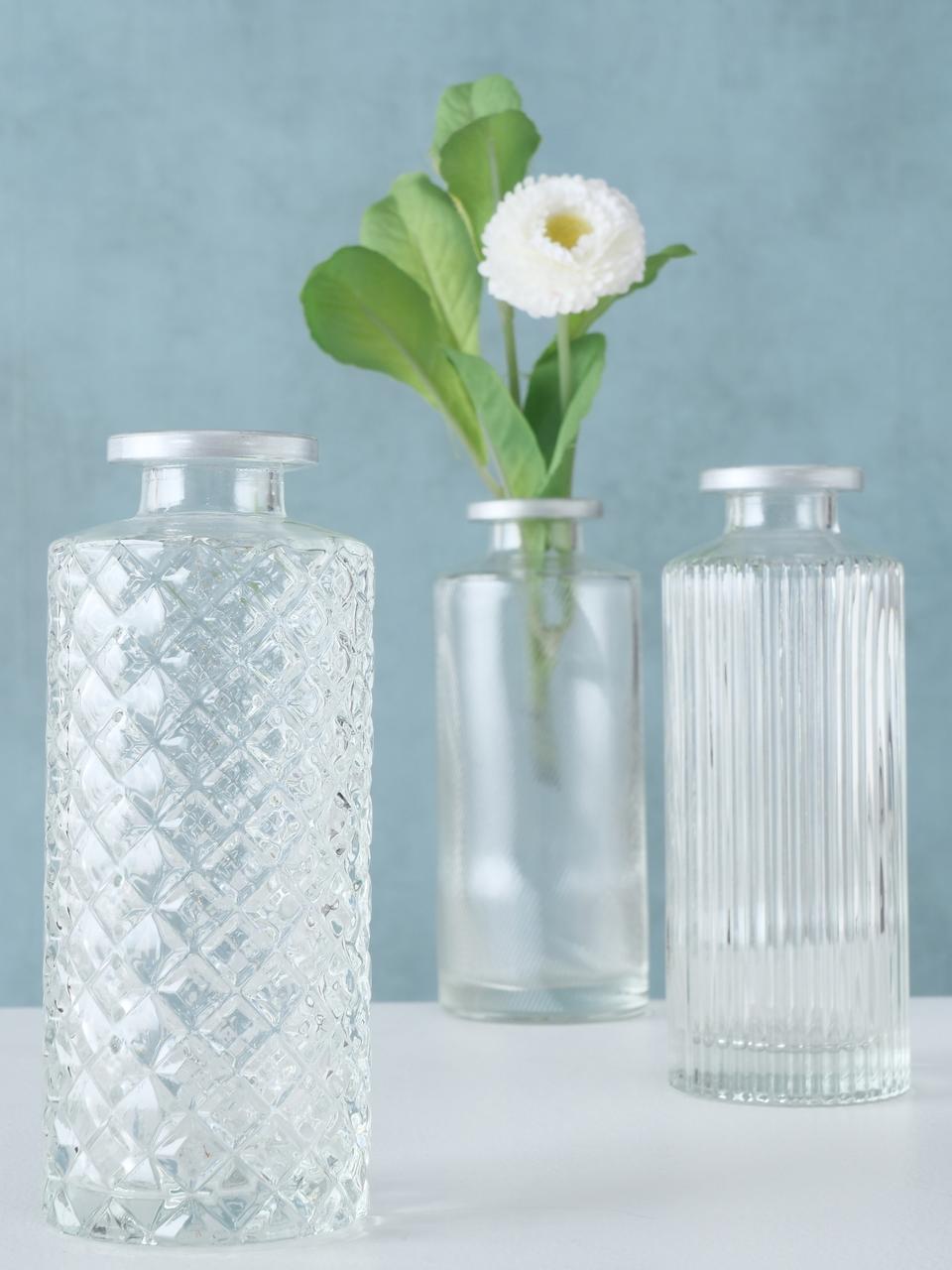 Kleines Vasen-Set Adore aus Glas, 3-tlg., Glas, Transparent, Ø 5 x H 13 cm