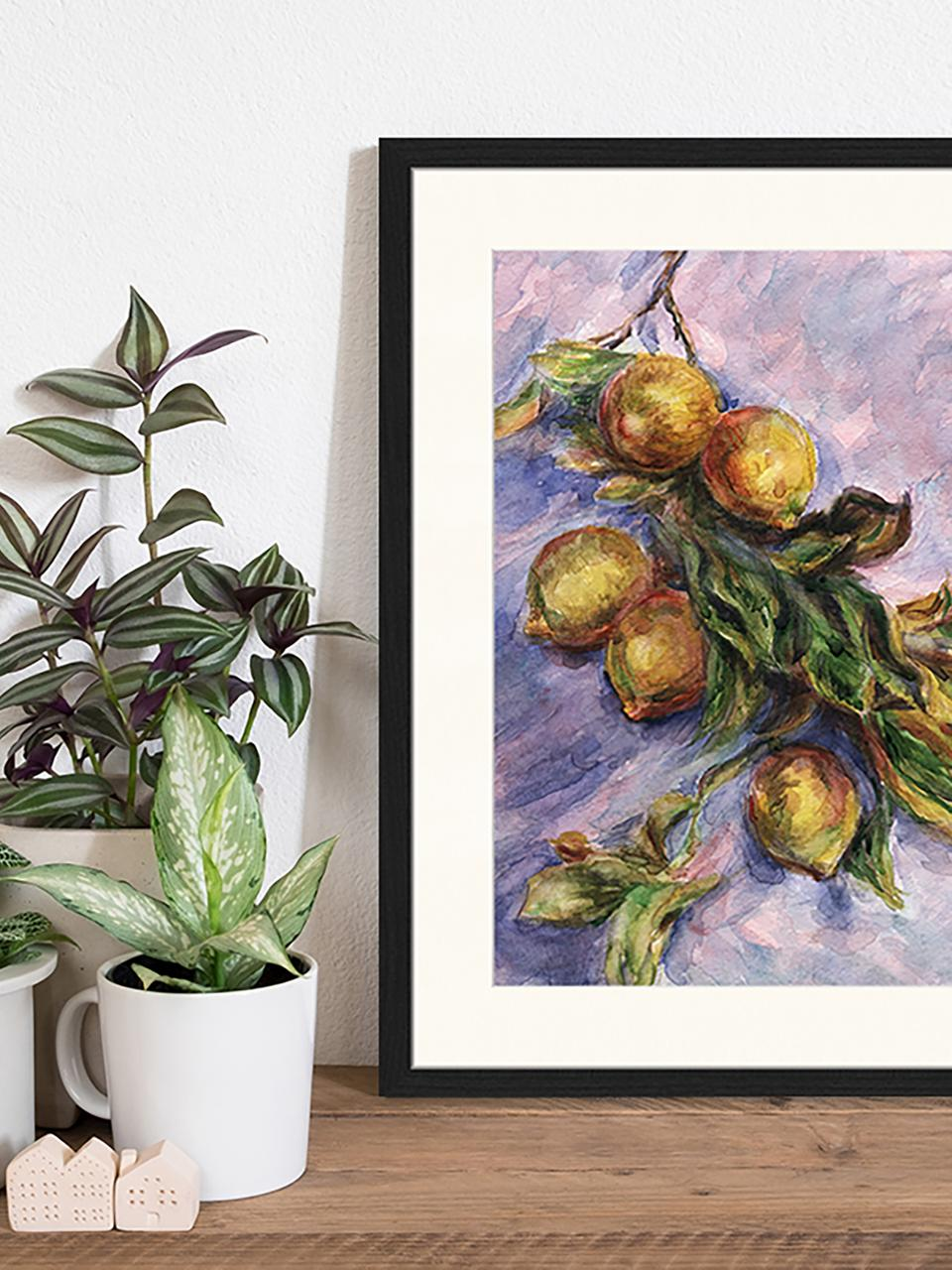 Gerahmter Digitaldruck Lemons On A Branch, Bild: Digitaldruck auf Papier, , Rahmen: Holz, lackiert, Front: Plexiglas, Mehrfarbig, 43 x 53 cm