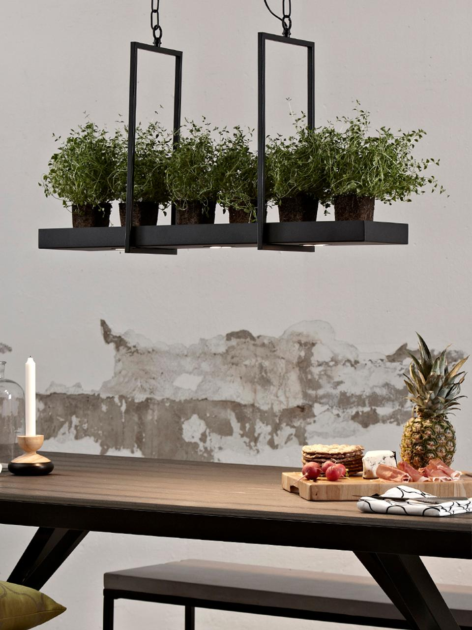 Lámpara de techo LED Tray, estilo industrial, Metal pintado, Negro, An 80 x Al 50 cm