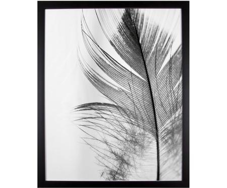 Zarámovaný digitální tisk Feather