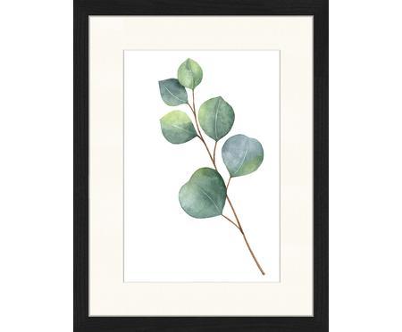 Impresión digital enmarcada Eucalyptus II