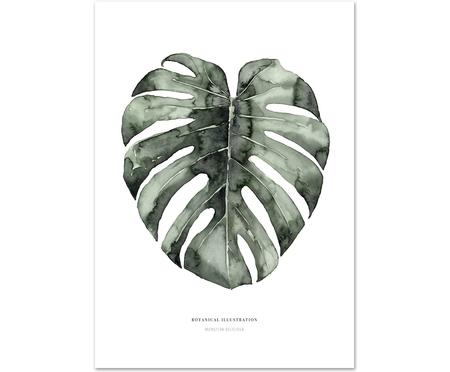Poster Urban Monstera