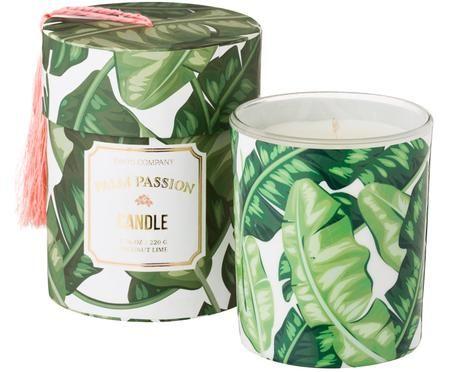 Duftkerze Palm Passion (Kokosnuss & Limette)