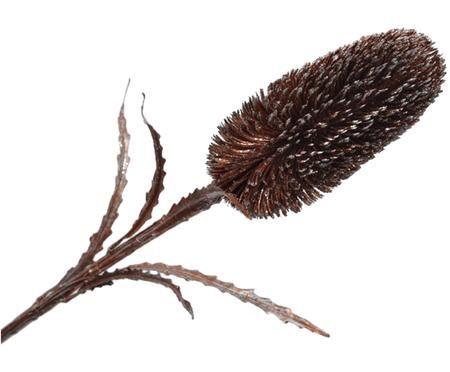 Kunstblume Zuckerbüsche Zena