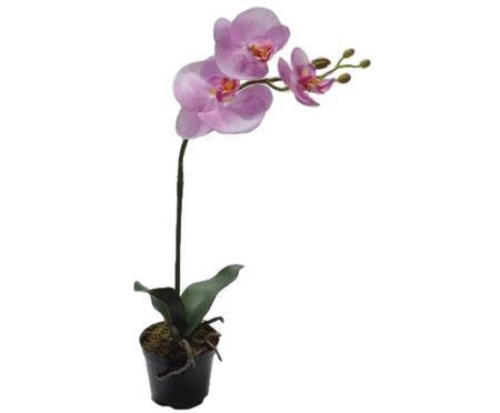 Flor artificial orquídea Betty