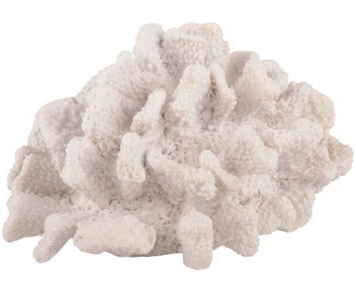 Decoratief object Coral, Wit