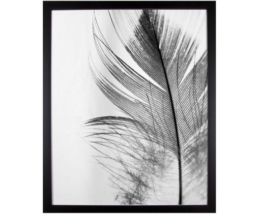 Gerahmter Digitaldruck Feather, Bild: Schwarz, WeißRahmen: Schwarz