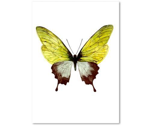 Poster Green Butterfly, Giallo, bianco, marrone