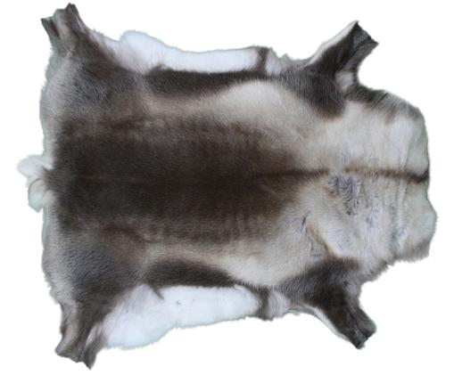Rentierfell-Teppich Dobri, Brauntöne, Weiß