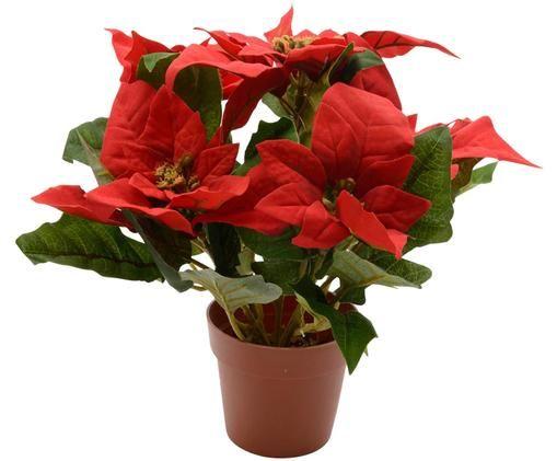 Flor de pascua artificial con maceta, Rojo,verde
