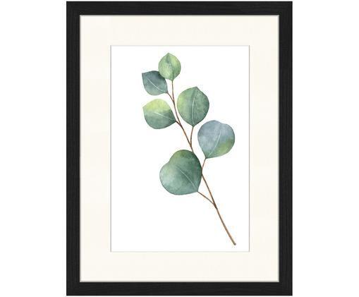 Ingelijste digitale print Eucalyptus II, Afbeelding: groen, wit. Lijst: zwart