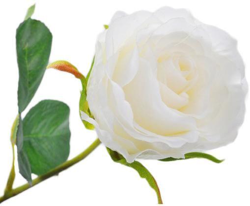 Rosa artificiale Rosalie, Crema