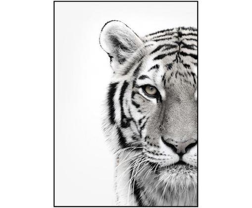Stampa digitale incorniciata White Tiger, Nero, bianco