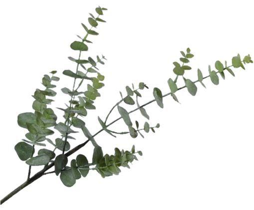 Flor artificial eucalipto Edwin, Verde