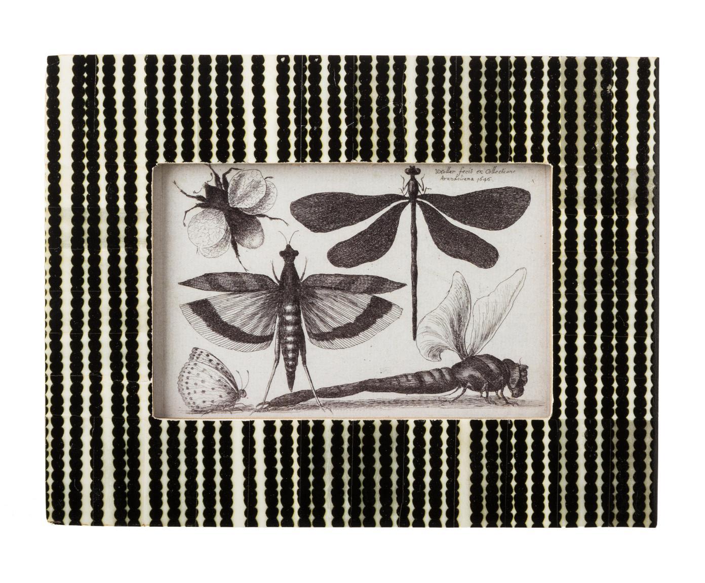 Fotolijst Babbit, Lijst: buffelbot, Zwart, wit, 10 x 15 cm