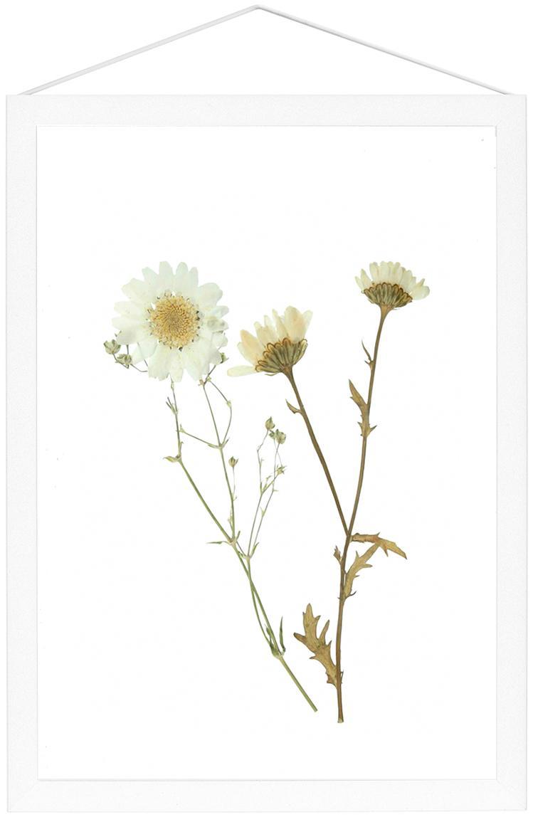 Ramka na zdjęcia Frame, Stelaż: aluminium malowane proszk, Stelaż: biały Zawieszka: czarny Front i tył: transparentny, S 23 x W 31 cm