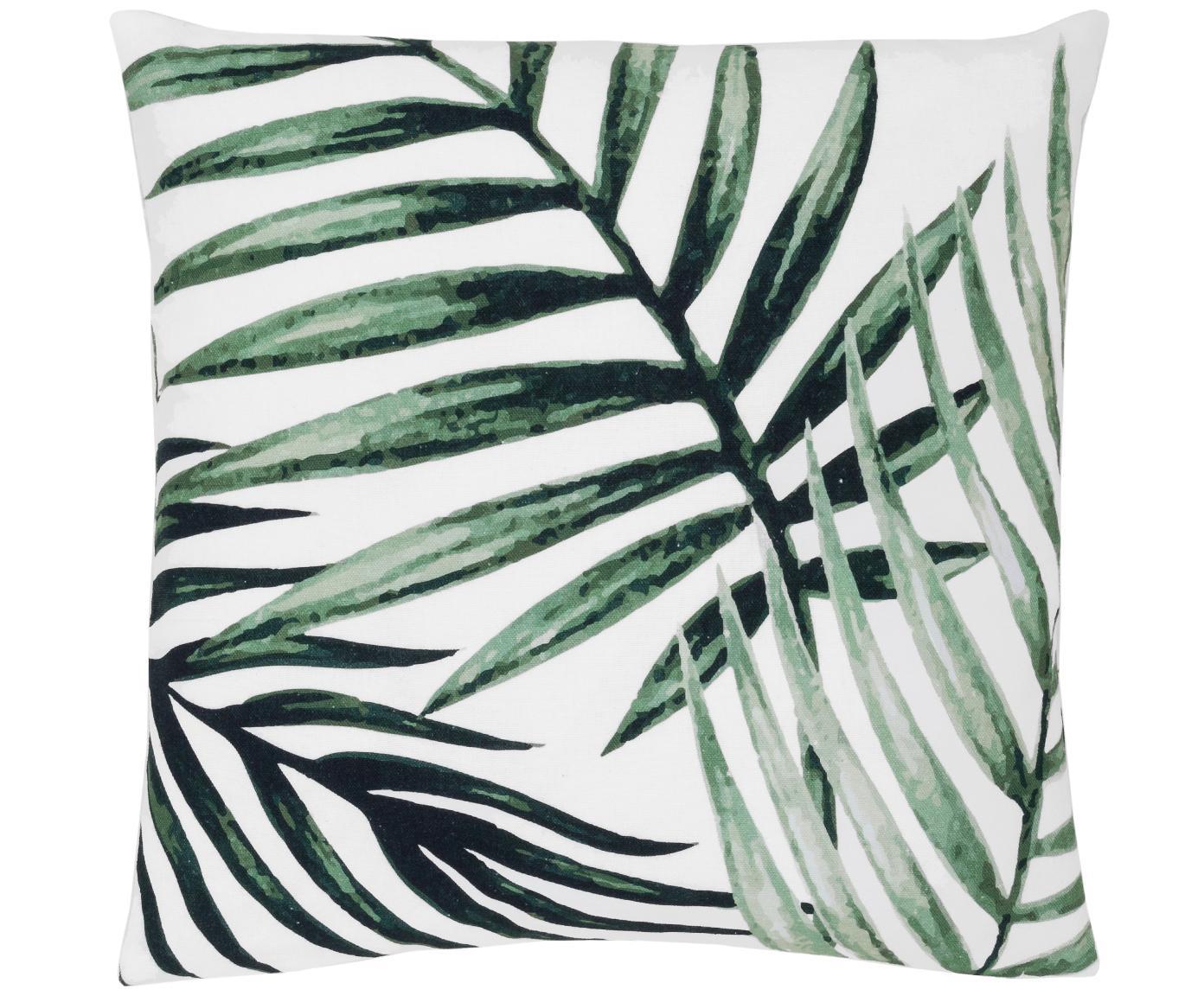 Federa arredo con motivo a foglia Coast, 100% cotone, Verde, bianco, Larg. 50 x Lung. 50 cm