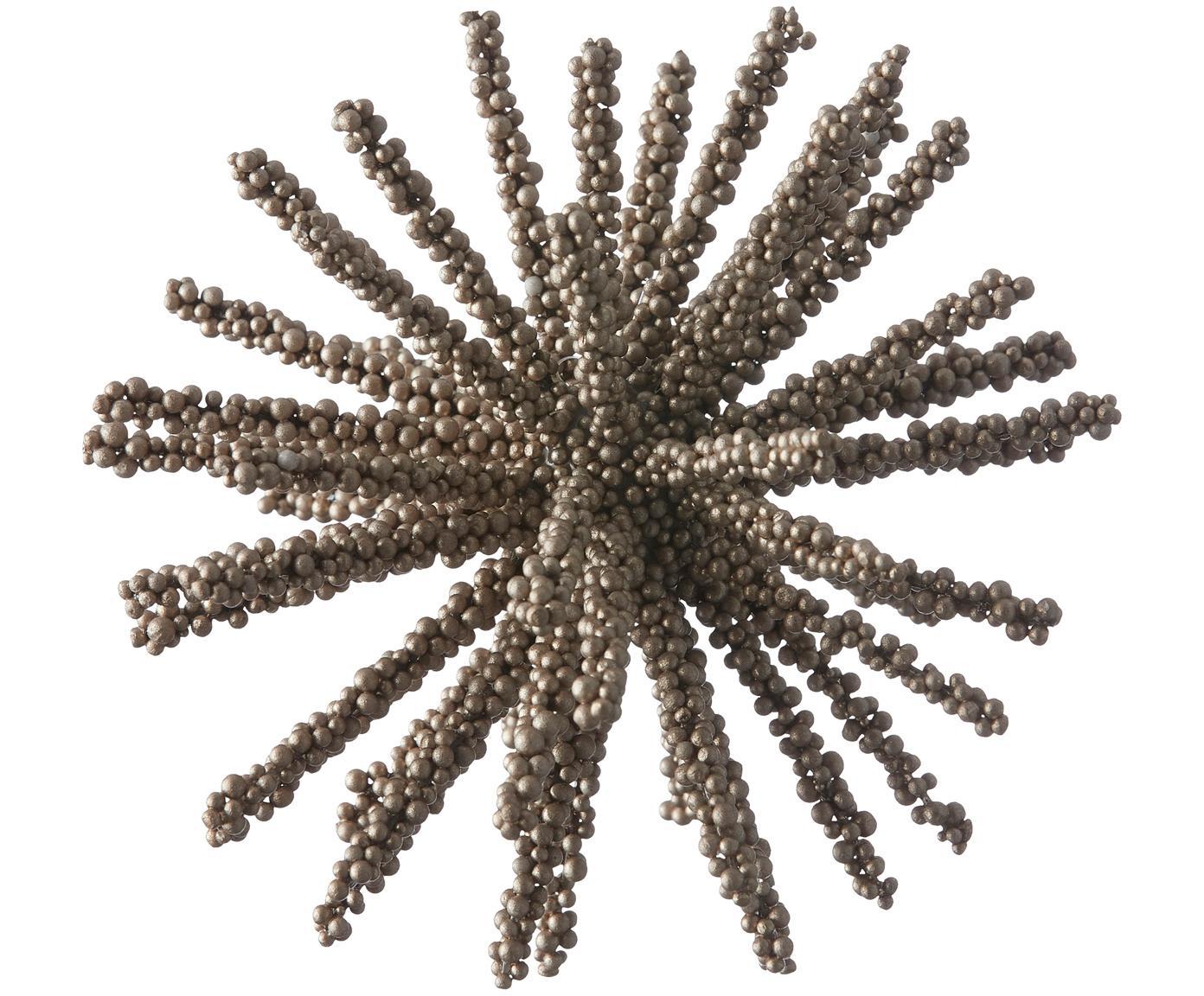 Piezas decorativas Florisa, 2uds., Plástico, Champán, Ø 14 x Al 14 cm