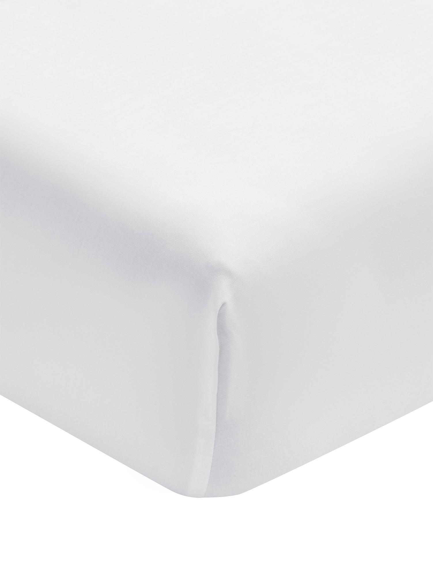 Lenzuolo con angoli in  raso di cotone Premium, Tessuto: raso, leggermente lucido, Bianco, Singolo