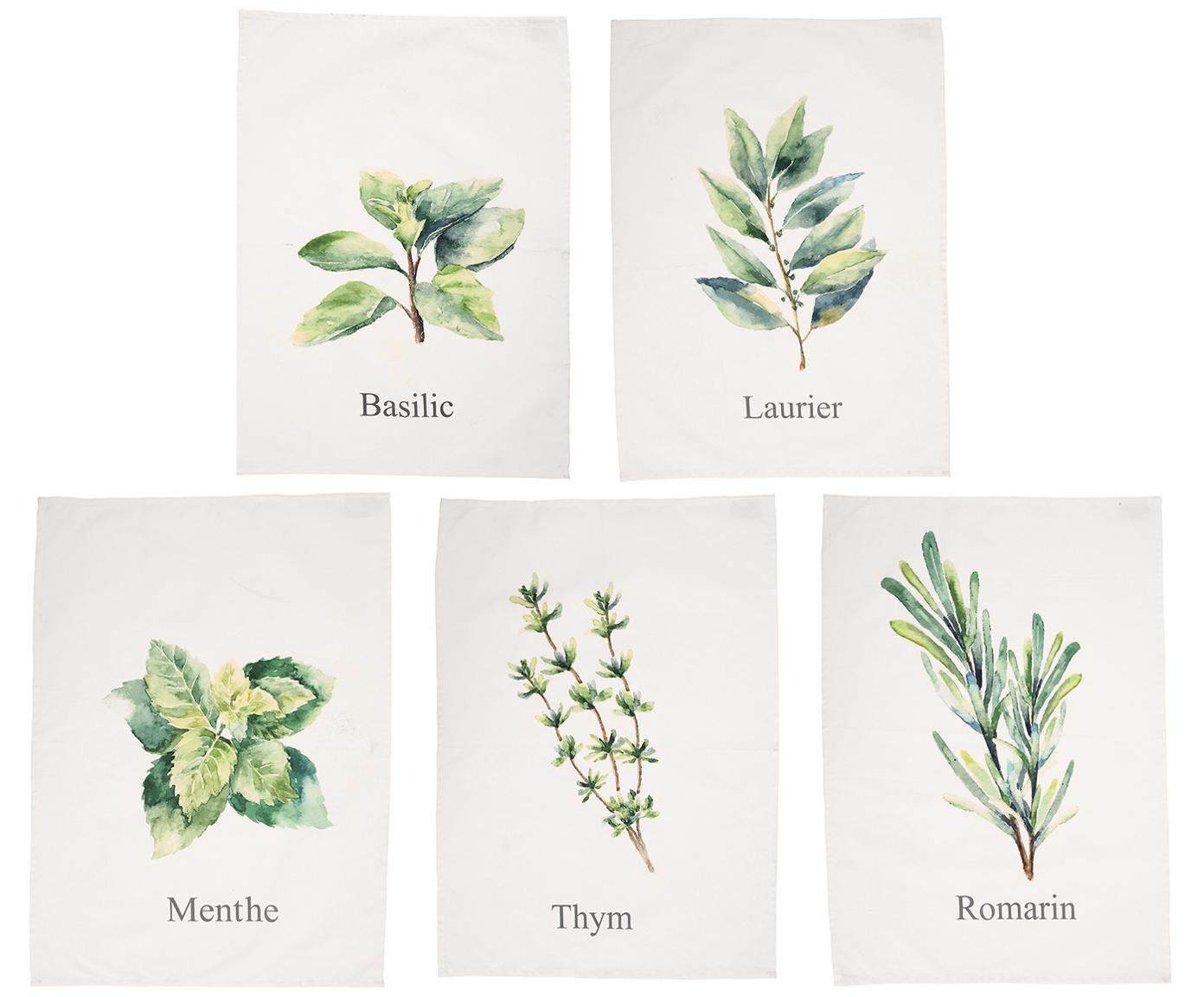 Theedoekenset Aroma met kruidenmotieven, 5-delig, Katoen, Gebroken wit, groentinten, 50 x 70 cm