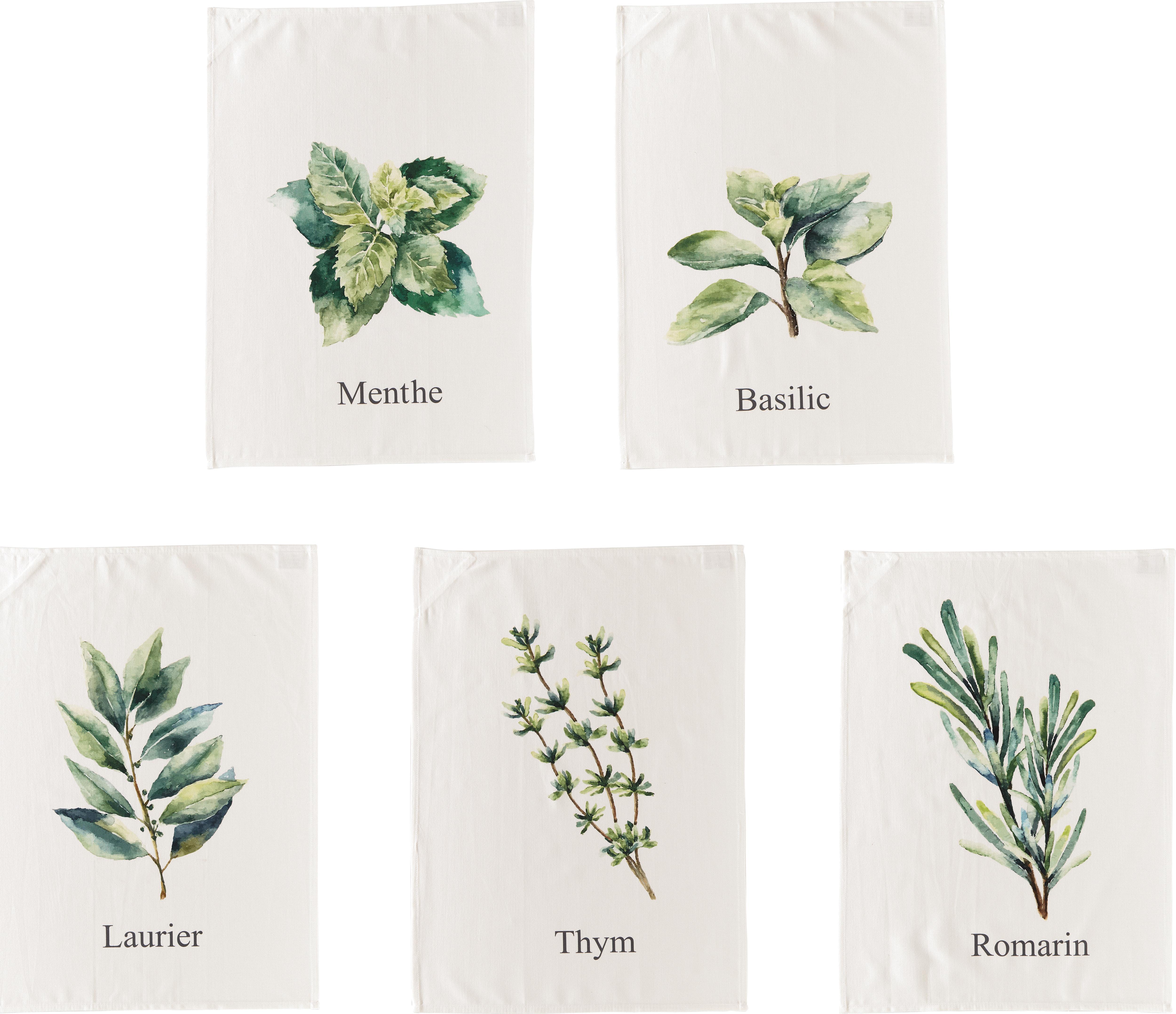 Geschirrtücher-Set Aroma mit Gewürz-Motiven, 5-tlg., Baumwolle, Gebrochenes Weiss, Grüntöne, 50 x 70 cm