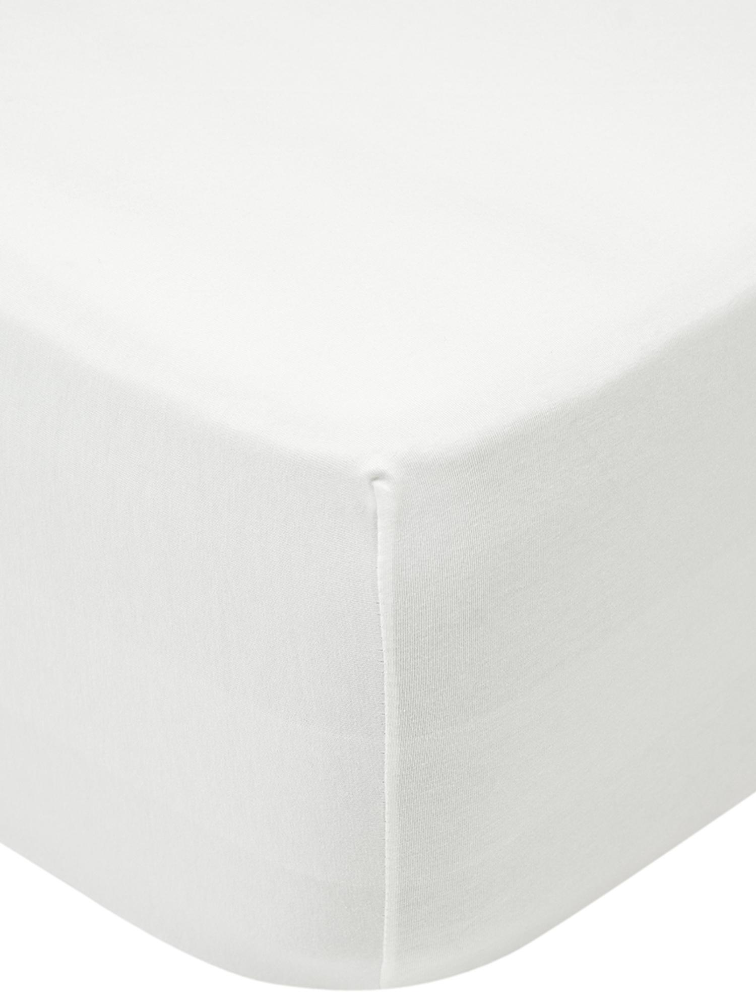 Lenzuolo con angoli  in jersey-elastan Lara, 95% cotone, 5% spandex, Color crema, Larg. 180 x Lung. 200 cm
