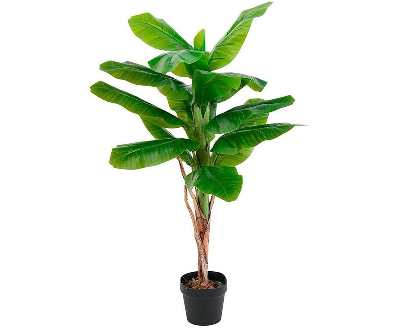 Planta artificial Bananier, Poliéster, látex, polipropileno, alambre de metal, Verde, Ø 60 x Al 120 cm