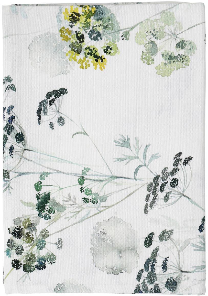 Tovaglia Herbier, Cotone, Bianco, verde, Larg. 160 x Lung. 160 cm