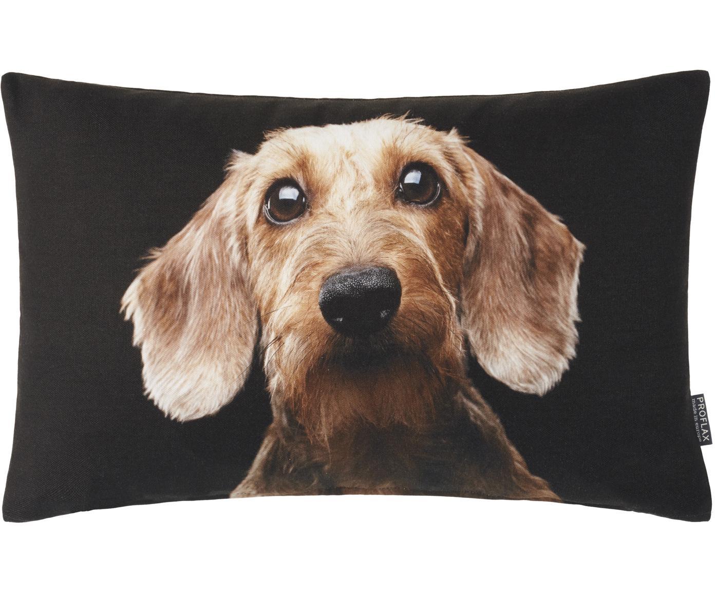 Poszewka na poduszkę Seppl, Bawełna, Czarny, odcienie beżowego, S 30 x D 50 cm