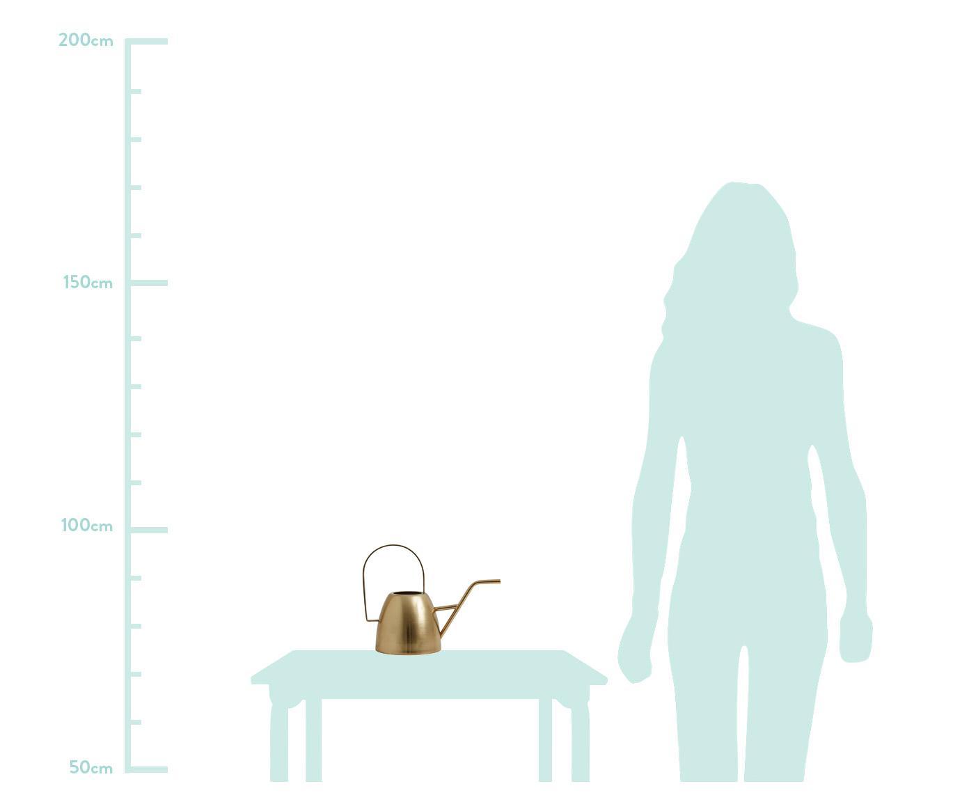 Gießkanne Brushed, Messing, gebürstet, Messing, 30 x 23 cm