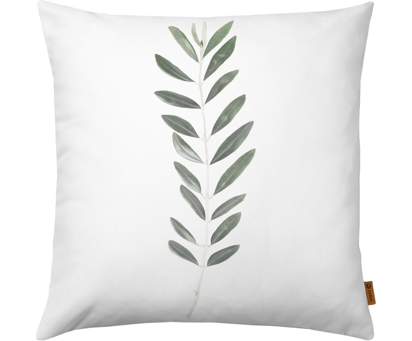 Kussenhoes Botanical met olijftak, Polyester, Wit, groen, 40 x 40 cm
