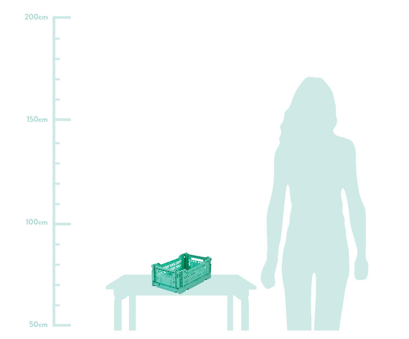 Klappkiste Mint, stapelbar, klein, Recycelter Kunststoff, Mintgrün, 27 x 11 cm