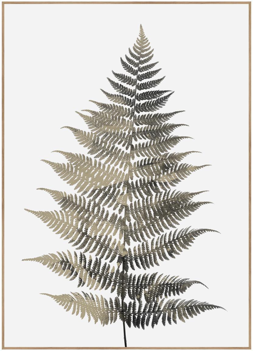 Gerahmter Digitaldruck Fern One, Bild: Digitaldruck auf Papier (, Rahmen: Hochdichte Holzfaserplatt, Grüntöne, Weiss, 50 x 70 cm