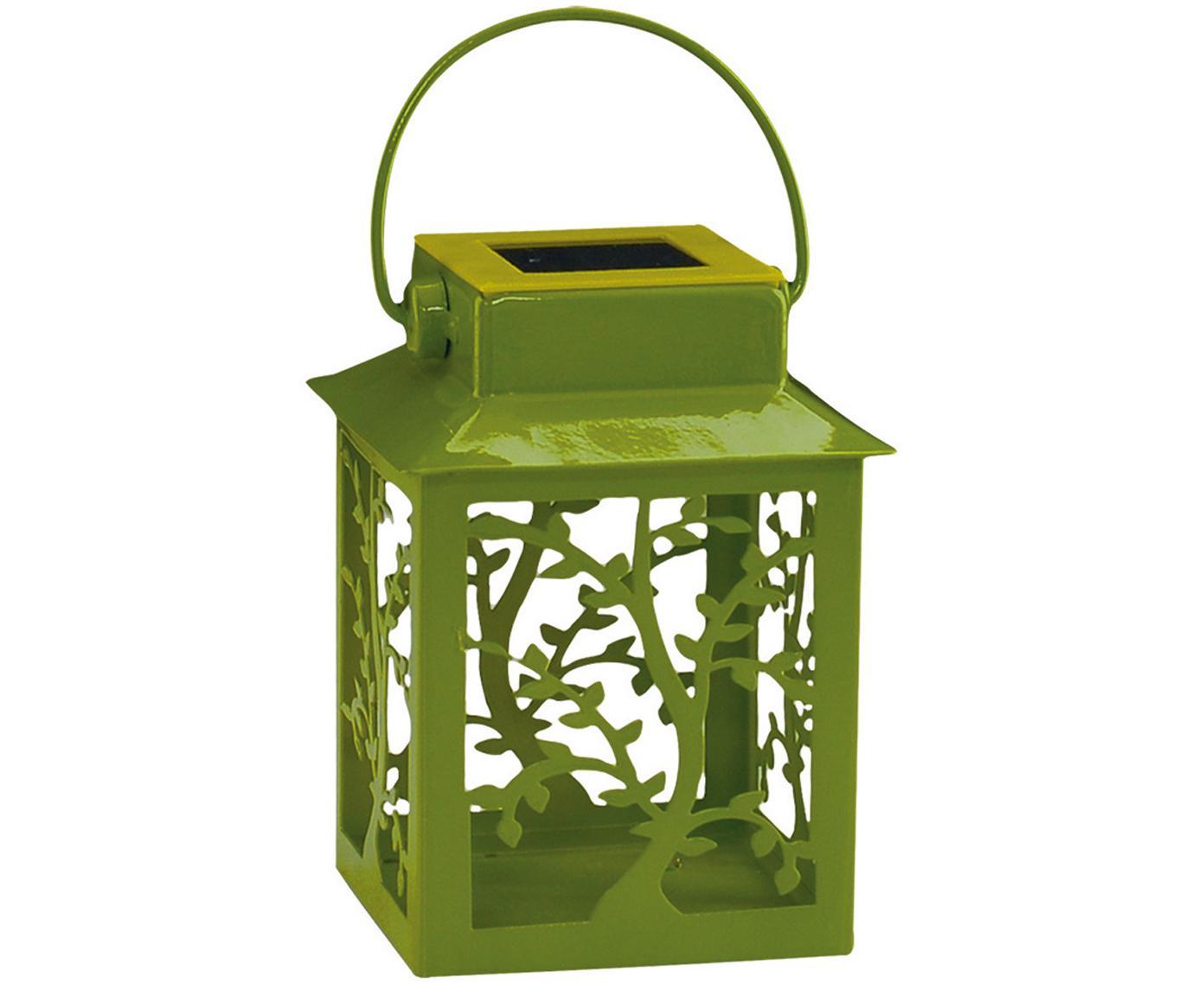 Lampa solarna LED Garden-Lantern, 4 szt., Metal, tworzywo sztuczne, Zielony, D 8 x W 13 cm