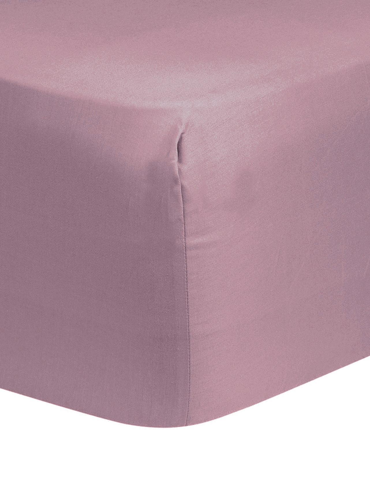 Katoensatijnen hoeslaken Comfort, Weeftechniek: satijn, licht glanzend, Mauve, 90 x 200 cm