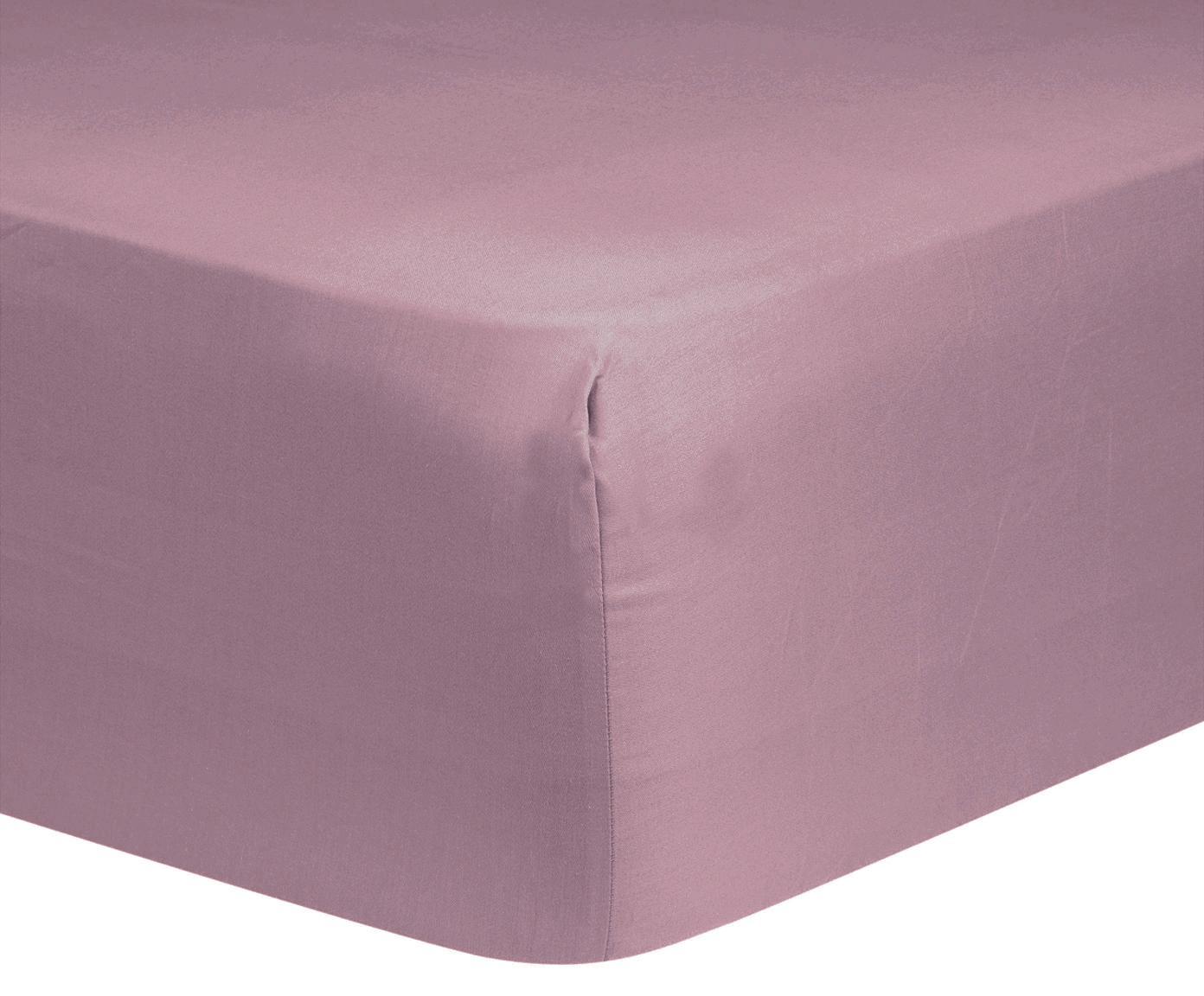 Lenzuolo con angoli in raso di cotone Comfort, Malva, Larg. 90 x Lung. 200 cm