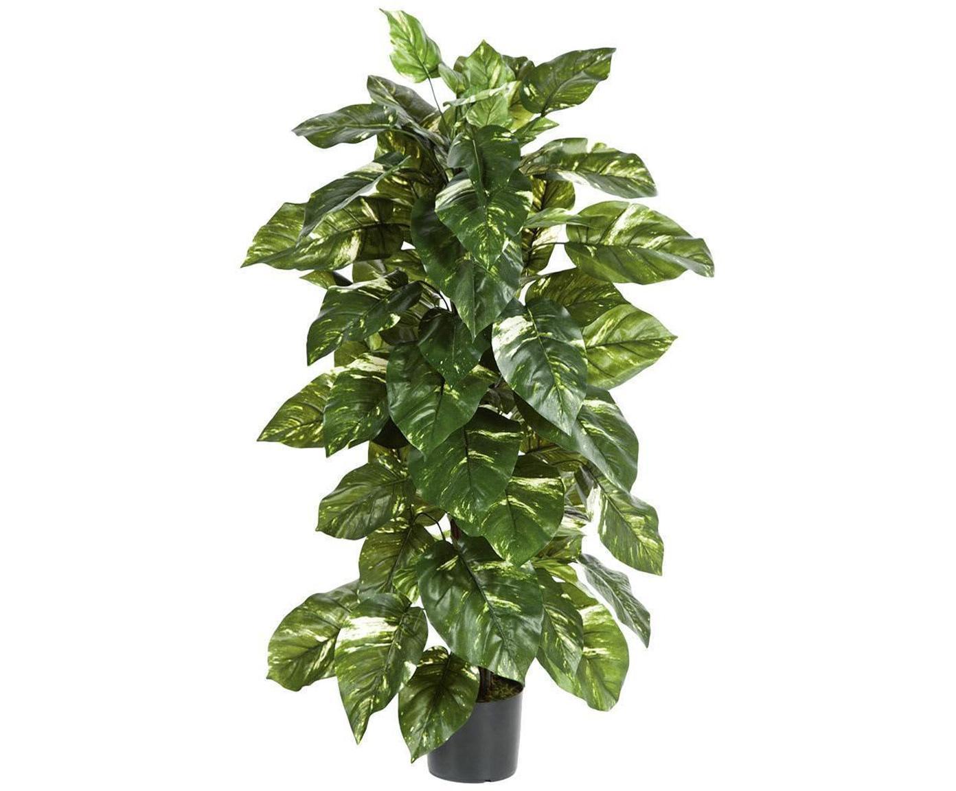 Planta artificial Potus, Poliéster, Látex, Polipropileno, Alambre de metal, Natural, Ø 40 x Al 120 cm