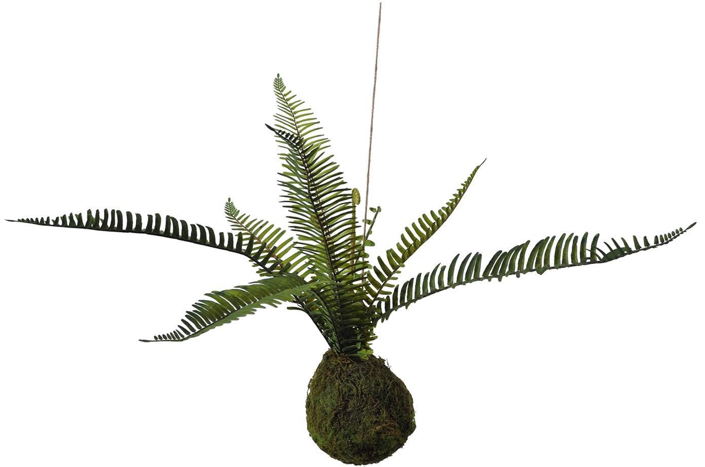 Kunstbloem Farn, Kunststof, schuimstof, polyester, watergras, sisal, metaal, Groen, bruin, H 55 cm