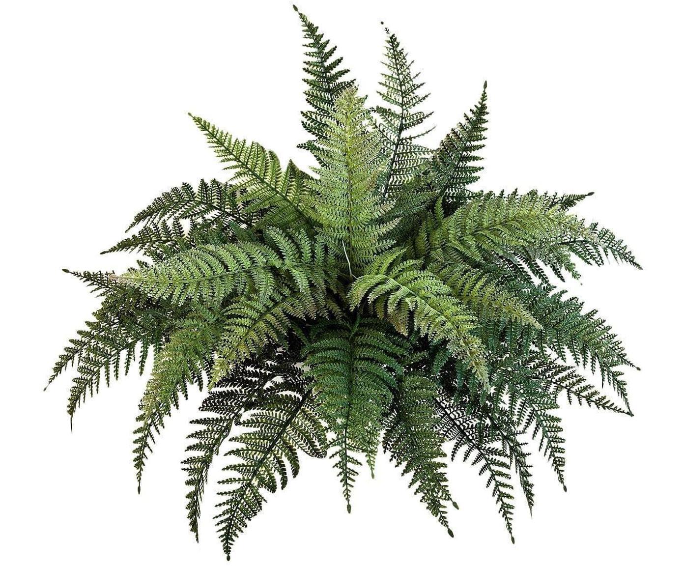 Planta artificial Helecho, Polietileno, Verde, Ø 65 cm