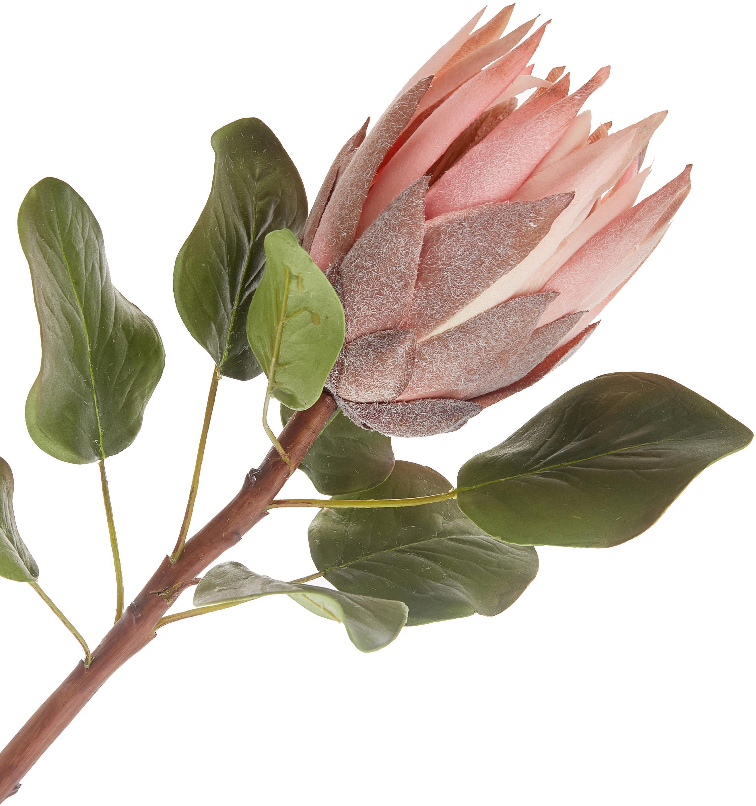 Kunstblume Zuckerbüsche, Polyester, PCV, Metall, Grün, Rosa, L 60 cm