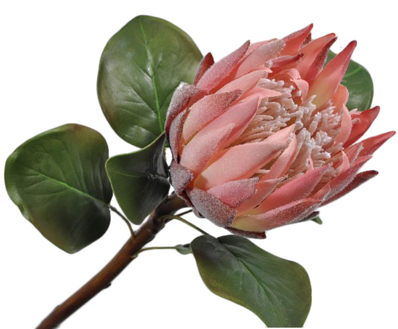 Kunstbloem Sugarbush Zenia, Polyester, PCV, metaal, Groen, roze, L 60 cm