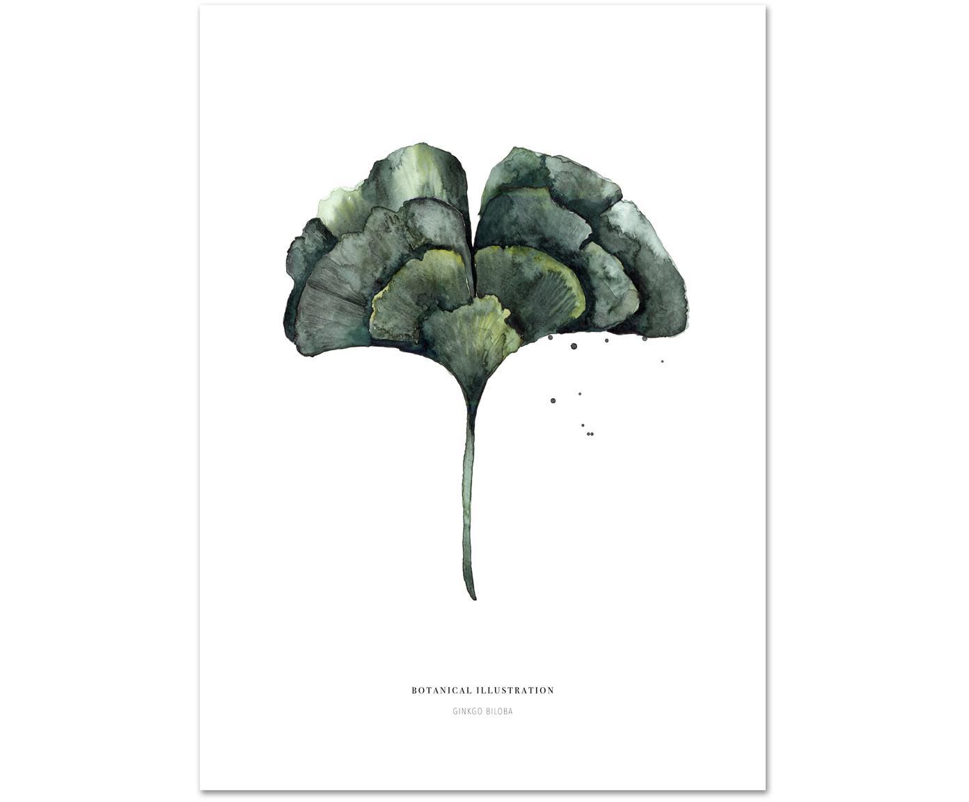 Poster Ginko, Stampa digitale su carta, 200 g/m², Bianco, verde, Larg. 21 x Alt. 30 cm