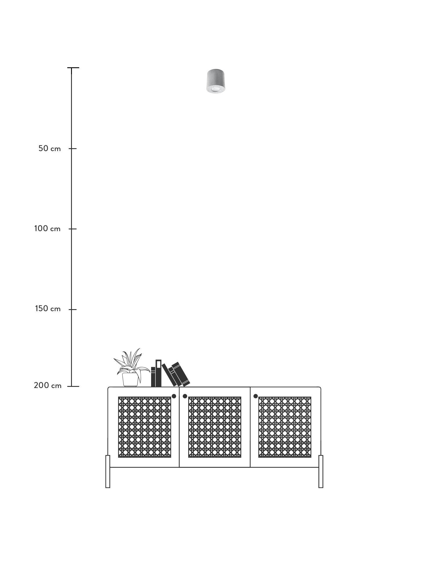 Plafondlamp Roda van beton, Beton, Lichtgrijs, Ø 10 x H 12 cm