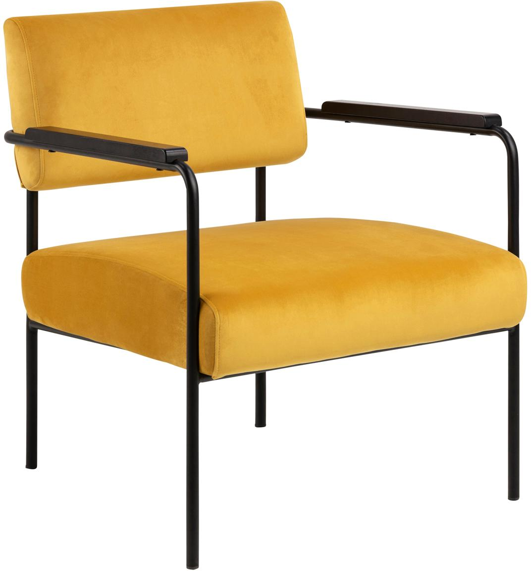 Sedia a poltrona in velluto Cloe, Rivestimento: velluto di poliestere 25., Struttura: metallo verniciato a polv, Velluto giallo, Larg. 67 x Prof. 67 cm