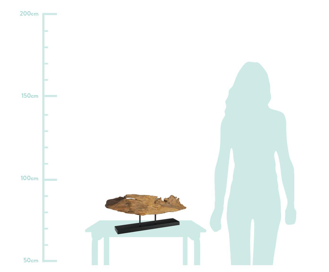 Dekoracja Acaia, Drewno naturalne, Brązowy, czarny, S 50 x W 28 cm