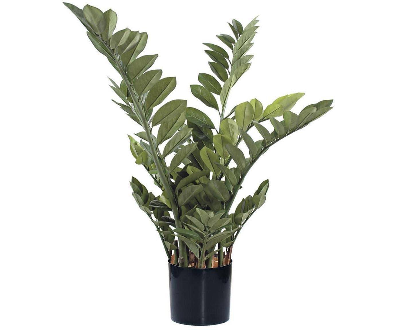 Planta artificial Smarag, Poliéster, Látex, Polipropileno, Alambre de metal, Verde, Ø 45 x Al 110 cm