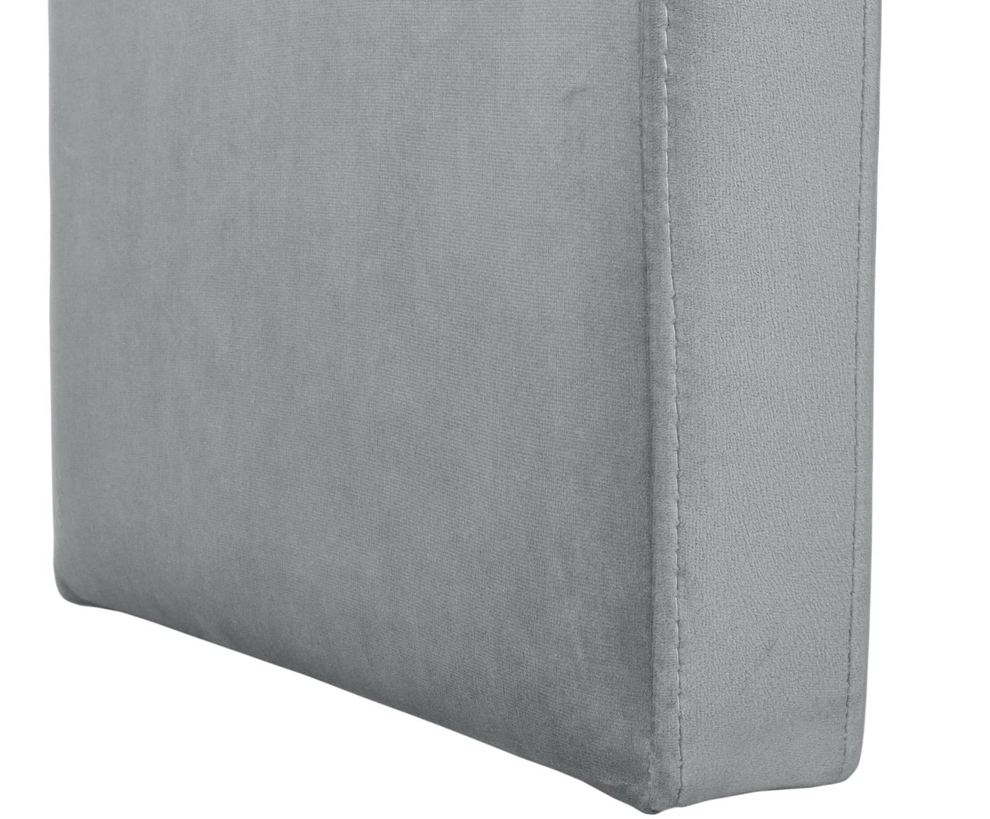 Moderne Samt-Polsterbank Penelope, Bezug: Samt (Polyester) 25.000 S, Gestell: Metall, Spanholz, Grau, 110 x 46 cm