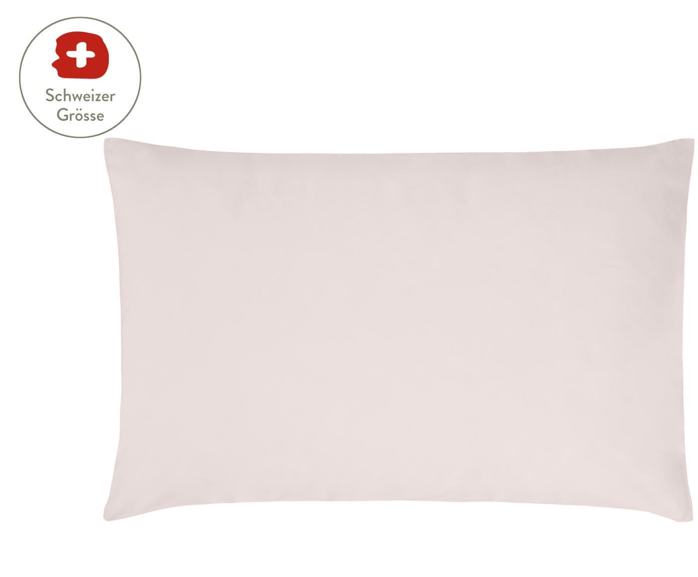 Baumwollperkal-Kissenbezug Elsie in Rosa, Webart: Perkal Fadendichte 200 TC, Rosa, 65 x 100 cm