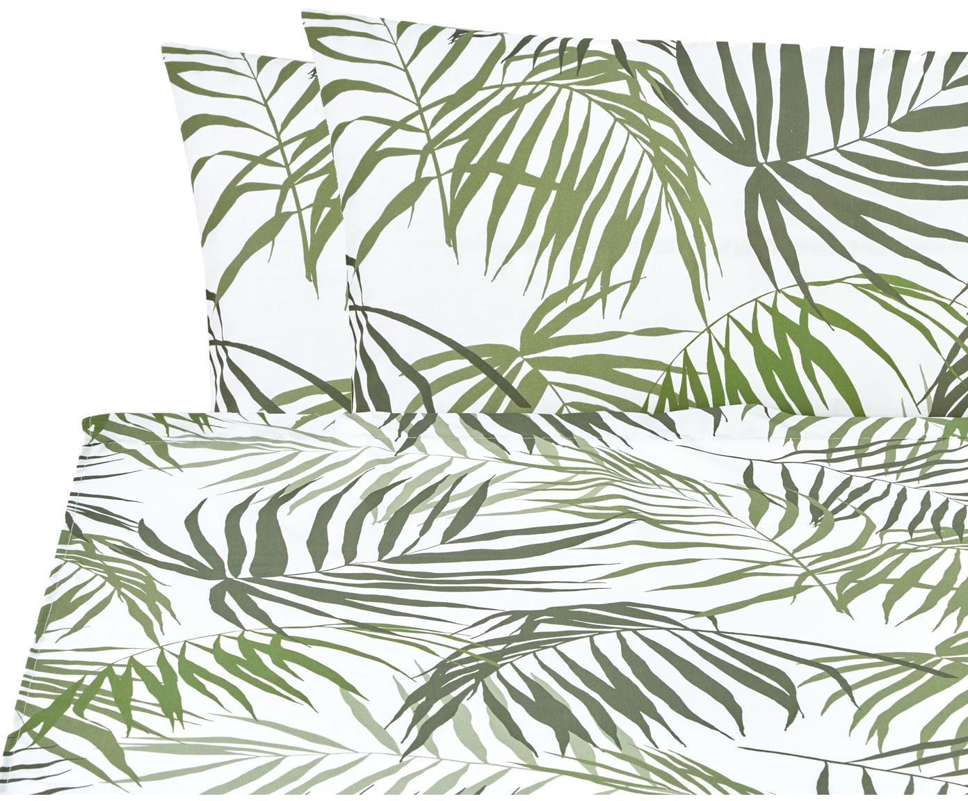 Set lenzuola in cotone Dalor 2 pz, Cotone, Verde, bianco, 240 x 270 cm