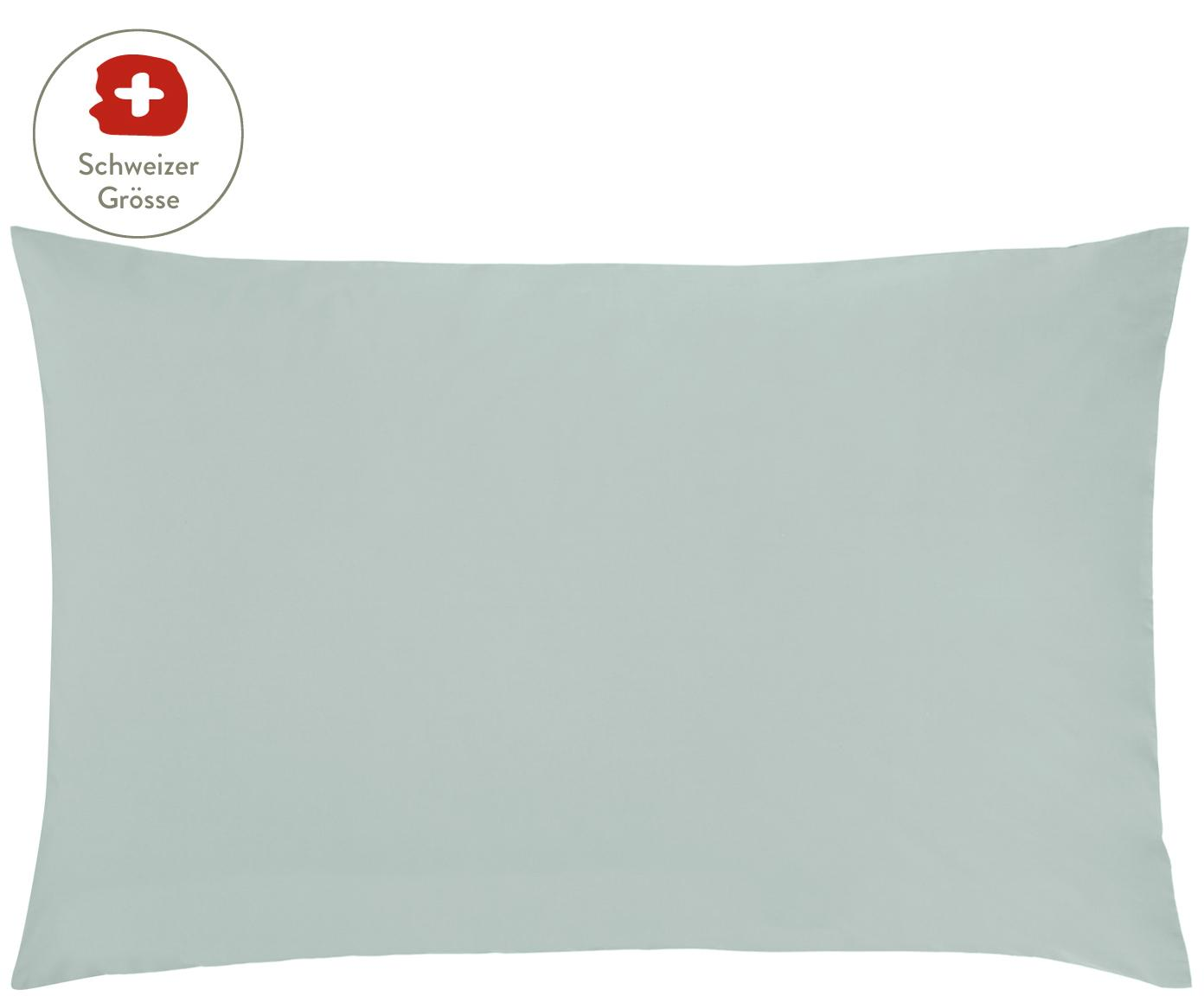 Baumwollperkal-Kissenbezug Elsie in Salbeigrün, Webart: Perkal Fadendichte 200 TC, Salbeigrün, 65 x 100 cm